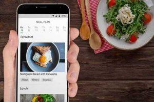 Program diet online